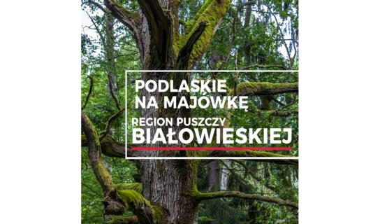 Podlaskie na majówkę – Region Puszczy Białowieskiej