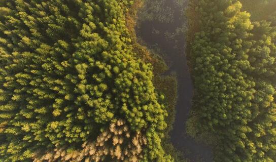 """Nagroda dla Podlaskiej Regionalnej Organizacji Turystycznej za film """"Odkrywaj Podlaskie"""" na 15-tym Festiwalu FilmAT"""